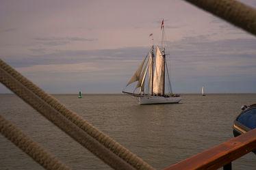 Abendstimmung auf der Sail In 2015