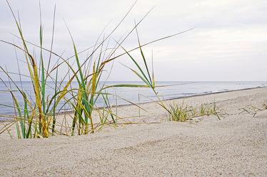 Bild mit Wasser, Gräser, Himmel, Wolken, Strände, Sand, Urlaub, Strand, Ostsee, Meer, Dünen, Gras, Küste, Reisen, Strand / Meer, Erholung, Wärme, warm, Relaxen, Ostseeküste, Ostseestrände, Tage, Tag, Erholen, Milde, Badeurlaub