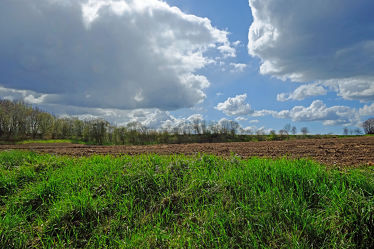 Bild mit Landschaften, Bäume, Wolken, Frühling, Sträucher, Felder, Wiesen, Regen, landwirtschaft, Mais, Korn, Feldbestellung, Bauern