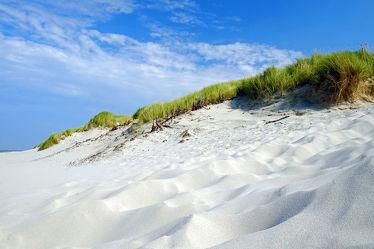 Betreten verboten da Inselschutz