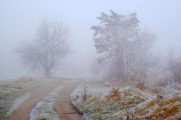 Bild mit Himmel,Bäume,Winter,Nebel,Winterzeit,Wandern,Rauhreif,Raureif