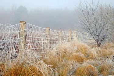 Bild mit Himmel,Winter,Nebel,Sonne,Winterzeit,Sonnenlicht,Wandern,Rauhreif,Raureif,Gitter,Zäune
