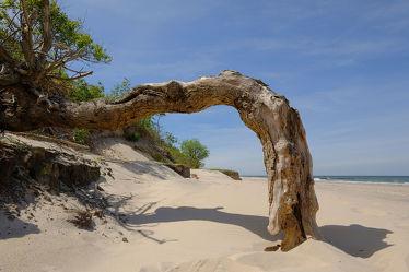 Bild mit Himmel,Sand,Sand,Urlaub,Sonne,Strand,Ostsee,Meer,Dünen,Licht,Küste,Reisen,Strand / Meer,Erholung,Wärme,Steilküste,Verwehungen