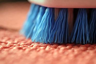 Bild mit Rosa,Blau,Extras,Borsten,Handbürste,Teppich,Arbeit,Reinigen