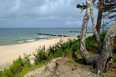 Bild mit Himmel, Bäume, Wolken, Birken, Strand, Meer, Strand / Meer, Ostseeküste, Steilküste, Polen