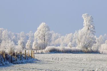 Bild mit Himmel, Bäume, Schnee, Felder, Winterzeit, Wiesen, Raureif, Dunst, Wolkenlos