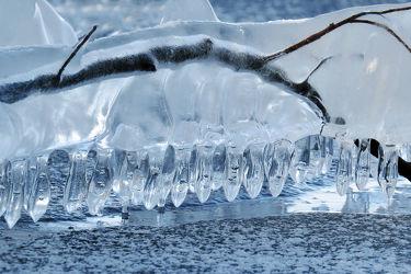 Bild mit Winter, Eis, Weiß, Kälte, Frost, Ast, Äste, Eisdecke, Stelakmiten