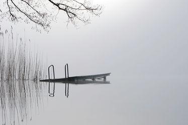 Bild mit Wasser, Nebel, Schilf, Licht, Ruhe, Stille, Erholung, Ausspannen, Idylle, reet, Schleswig_Holstein, Schatten, Pohlsee