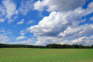 Bild mit Himmel, Bäume, Wolken, Sommer, Landschaft, Felder, Naturschutz, Knicks