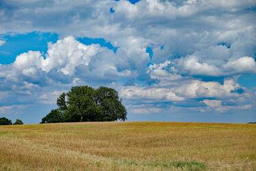 Bild mit Himmel, Wolken, Herbst, Baum, Ausspannen, Stoppelfeld, Anhöhe, Herbstidylle
