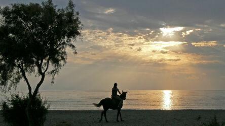 Bild mit Sonnenuntergang, Strand, Strand, Ausritt