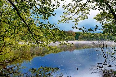 Bild mit Gewässer, Herbst, Gegenlicht, Ausspannen, Naturschutzgebiet