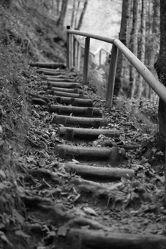 Holztreppe, schwarz weiss Foto