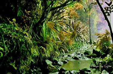 Bild mit Natur, Wasser, Landschaften, Wälder, Wald, Urwald, Regenwald, urwälder, wild life, regenwälder