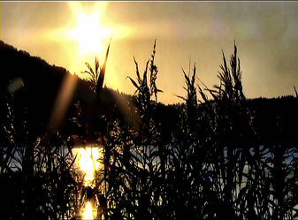 Bild mit Natur, Wasser, Landschaften, Gewässer, Seen, Sonnenuntergang, Sonnenaufgang, Schilf, See, Teich