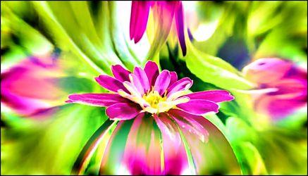Makro Flower