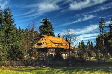 Bild mit Natur, Wälder, Sonne, Wald, Haus, Sonnenschein, Schilfdach, Hütte, Haus im Wald