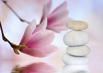 Bild mit Blumen,Stein,Steine,Steine,Blume,Pflanze,Meditation,balance,Ruhe,Entspannung,Buddha,Wellness,blüte,frisch,detail,Erholung,Deko,dekorativ,Dekoration,Magnolie,Symbol,Magnolienblüte,Zweig,relax,glaube,gleichgewicht,pastell,steinpyramide,steinstapel,symbolik