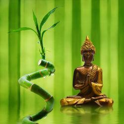 Bild mit Meditation, Ruhe, Entspannung, Buddha, Wellness, Spa, zen