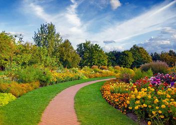 Bild mit Farben, Natur, Pflanzen, Landschaften, Bäume, Jahreszeiten, Blumen, Herbst, Baum, Blume, Ruhe, Park, Bunt, Erholung, Parkanlage, Idylle, Jahreszeit, gehweg