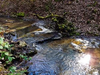 Bild mit Gewässer
