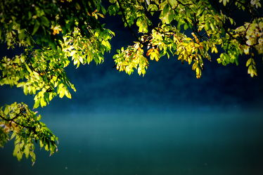 Bild mit Landschaftsfotografie