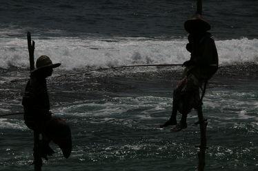 Stelzenfischer Bild 3085
