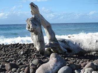 Bild mit Wasser, Wellen, Strand, Meer