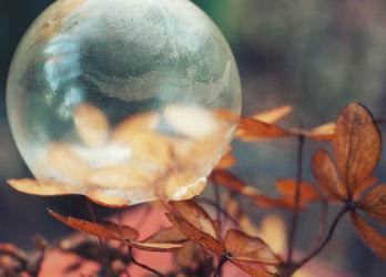 Bild mit Winter, Eis, Seifenblasen, Blasen, Seifenblase, Bubble, Winterzeit, Kälte, Frost, gefroren, Kalt, Blase, Ice Bubble