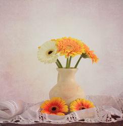 Bild mit Blumen, Gerberas, Blume, Gerbera, Stillleben, Blüten, Blüten, Strauß, vase