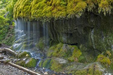 Bild mit Natur, Wasser, Grün, Stein, Bach, Wasserfall, Schönheit, Florale Schönheiten, Naturfotografie, Moos, Naturschutzgebiet, Fels, nass, Feucht, Kühl, Naturfoto, wutachschlucht, moosbedeckt, schleierwasserfall