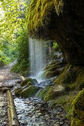 Bild mit Natur, Wasser, Grün, Stein, Bach, Wasserfall, Schönheit, Florale Schönheiten, Naturfotografie, Hochformat, Moos, Naturschutzgebiet, Fels, nass, Feucht, Tag, Kühl, Naturfoto, aussenaufnahme, wutachschlucht, moosbedeckt, schleierwasserfall, vertikal