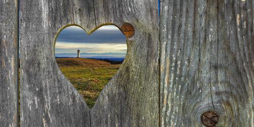 Bild mit Natur, Holzstruktur, Landschaft, Holzwand, rustikale Bretter, Herz, Herzform, schwarzwald, feldberg, Toilettentüre
