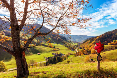 Bild mit Natur, Weiden und Wiesen, Herbst, Landschaft, Gebirge, tal, schwarzwald, bollenhut, trachtenhut, Münstertal