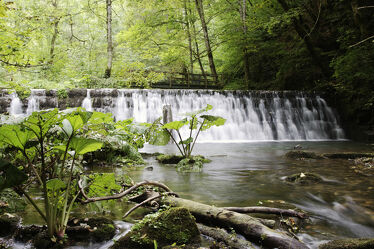 Bild mit Natur, Gewässer, Gewässer, Wasserfall, Fluss, schwarzwald, wutachschlucht, Gauchachschlucht, gauchach, flusslandschaft
