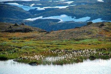 Norwegen Gebirgslandschaft