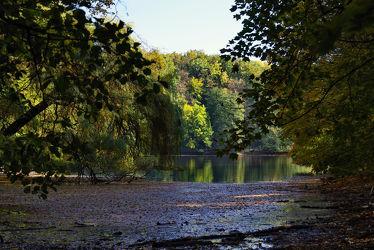 Bild mit Natur, Wasser, Bäume, Gewässer, Herbst, Wald, Blätter, Teich, Spiegelungen, Erholung, Weiher, Reflexionen, Stadtwald, Jaheszeiten, grüne Lunge