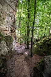 Bild mit Natur, Grün, Bäume, Wald, Weg, Wanderungen, Wandern, sandstein, Tourismus, Jura, Teufelsschlucht, Naturpark Südeifel, Irrel, Eiszeit, Felssturz, Geologie, geklüftet, porös, Gesteinsschichten, Lias, Wasserundurchlässigkeit, Keuper, Verwitterung, Frostsprengung, Felsstürze, Felsblöcke, Felsspalte, Felswände, bizarr, Vulkaneifel, Ferschweiler, Plateau