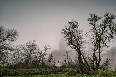 Bild mit Landschaften, Bäume, Gebäude, Deutschland, Häuser, Nebel, Wiese, November, hessen, Stimmung, Düster, Bayern, Bebauung, dunstig, unheimlich
