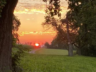 Bild mit Bäume, Sonnenuntergang, Abendrot