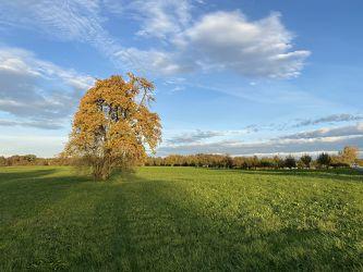 Bild mit Farben, Himmel, Landschaften im Herbst, Formen und Stimmungen