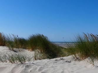 Bild mit Meer, Dünen, Dünengras, Nordseeküste
