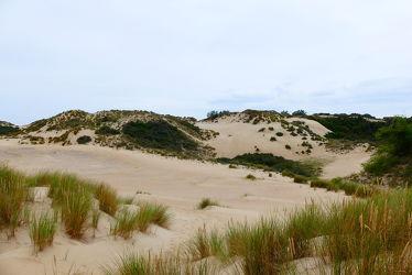 Bild mit Sand, Dünen, Dünengras, Nordseeküste