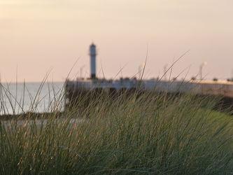 Bild mit Meer, Dünengras, Nordseeküste, Abendlicht, Abendsonne, Abendstimmung, Unschärfe, Mole, Schärfe, Belgien