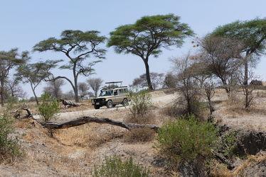 Bild mit Natur, Afrika, Nationalpark, Auto, safari, safari