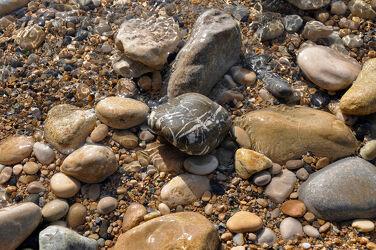 Bild mit Steine, Naturstein, Kieselsteine, Mineralien