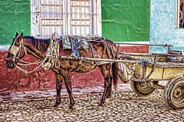 Bild mit Pferd, kutsche, Pflastersteine