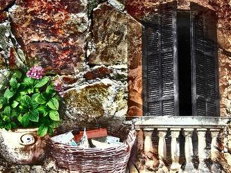 Bild mit Fenster, Haus, Blume, Wohnung, Rolladen