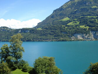 Bild mit Natur, See, berg, Schweiz