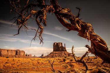 Bild mit Landschaften, USA, wüstenlandschaft, USA Nationalparks, USA Nationalparks